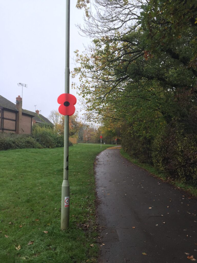 Poppies on Lampost